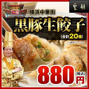 【餃子-20個入】★販売個数2800万個突破★パリパリ...