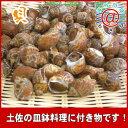 貝 ばい貝 生冷凍 送料無料 ばい貝1kg「煮貝でいただくのが一番、甘辛く煮付けてバイ貝を!」貝料理や皿鉢料理オススメ
