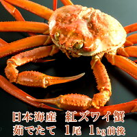 日本海産茹でたて紅ズワイ蟹1尾1kg前後【かにカニ蟹】【希少】【品薄】
