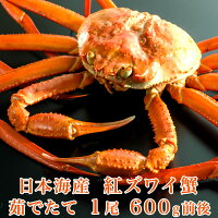 日本海産茹でたて紅ズワイ蟹1尾600g前後【かにカニ蟹】