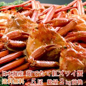 【送料無料】日本海産茹でたて紅ズワイ蟹5尾(総量2kg前後)【かにカニ蟹】