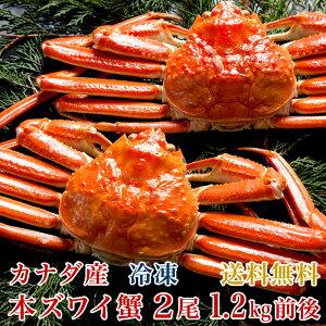 【送料無料】カナダ産本ズワイ蟹2尾(総量1.2kg前後)【濃厚な蟹みそ】【ギフト贈答】【かに蟹カニ】