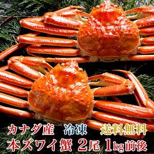 【送料無料】カナダ産本ズワイ蟹2尾(総量1kg前後)【濃厚な蟹みそ】【ギフト贈答】【かに蟹カニ】