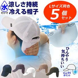 【同色5枚まとめ割り】特許取得 冷える帽子 クールビットWメッシュキャップ 炎天下 猛暑での熱中対策に!通気性も抜群!夏も涼しい帽子を追求!coolbit 父の日 帽子 日よけ帽子 UVカット帽子 熱中症対策 スポーツ 熱中症対策 帽子 熱中症対策グッズ 帽子