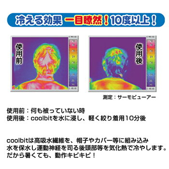 冷える効果一目瞭然10℃以上現場熱中症対策グッズcoolbitクールビットビルダーV
