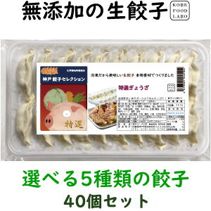 美味しい無添加餃子5種類から選べる冷凍生餃子2パック 40個 オリジナル特製餃子のたれ100ml 1本2,800円 送料込み(一部地域除外)お好きな餃子を2パックお選び下さい