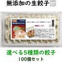 美味しい無添加餃子5種類から選べる冷凍生餃子5パック100個オリジナル特製餃子のたれ100mlボトル1本5,100円 送料込み…