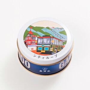 神戸おみやげ:神戸六景ミニゴーフルシティループ