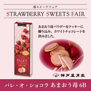 パレオショコラあまおう苺6B