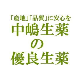 【本日楽天ポイント5倍相当】中嶋生薬株式会社 ナカジマ アガリクス茸 100g(ブラジル産・小口切)