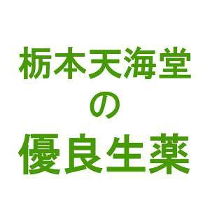 栃本天海堂南蛮毛(ナンバンモウ・別名:玉米鬚・ギョクベイシュ・トウモロコシの毛)(中国産・刻み) 500g【健康食品】(画像と商品はパッケージが異なります) (商品到着まで10〜14日間程度