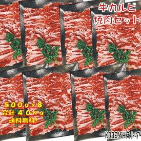 焼き肉 バーベキュー 食材 BBQ 肉 焼肉セット カルビ バラ バーベキュー 肉 バーベキューセット 食材 BBQ食材セット BBQ 焼肉 牛丼 牛肉 4kg 送料無料 12〜15人前