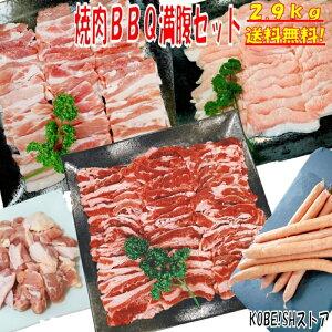 バーベキュー 食材 BBQ 肉 焼肉セット 牛カルビ 牛バラ 豚カルビ 豚バラ 鶏もも肉 バーベキュー 肉 豚トロ ウインナー ソーセージ BBQ 食材 ホームパーティー 焼肉 豚肉 鶏肉 牛肉 2.9kg 送料無料