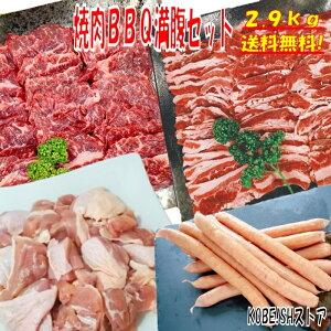 焼き肉 バーベキュー 食材 2.9kg BBQ 肉 焼肉セット 牛カルビ 牛バラ 牛ハラミ 鶏もも肉 バーベキュー 肉 ウインナー ソーセージ BBQ 食材 焼肉 豚肉 鶏肉 牛肉 送料無料 8〜12人前