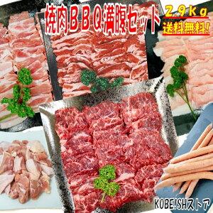 焼き肉 バーベキュー 食材 2.9kg BBQ 肉 牛カルビ 牛バラ 牛ハラミ 豚カルビ 豚バラ 鶏もも肉 バーベキュー 肉 豚トロ ウインナー ソーセージ 肉 ホームパーティー 焼肉 豚肉 鶏肉 牛肉 送料無料