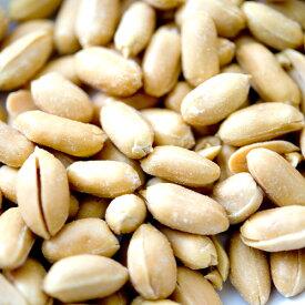 バターピーナッツ 900g,Butter Peanut,南京豆,ナッツ,落花生,ムキミ,バタピー,バタピ,おつまみ,おやつ,【ゆうパケット送料無料】