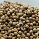 コリアンダーシード ブラウン モロッコ産 250g 【Coriander Seeds,コエンドロ,原型,コリアンダー,シード,インド,スペ…