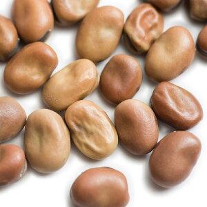 そら豆 乾燥 小粒 1kg/1000g 【ソラマメ,Faba Beans,業務用,神戸スパイス,スープ,卸,材料,ドライ,Soybean,神戸スパイス 【送料無料】