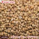 コリアンダーシード ブラウン モロッコ産 1kg 【Coriander Seeds,コエンドロ,原型,コリアンダー,シード,インド,スペイ…