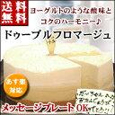 2種類のチーズ【ドゥーブルフロマージュ】(Wチーズ)バースデーケーキ 誕生日ケーキ 内祝い ポイント10倍 2017 …