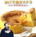 神戸半熟カステラ フーケのザビエルバースデーケーキ 誕生日ケーキ 内祝い 送料無...