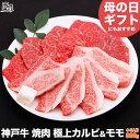 【母の日 にもおすすめ】神戸牛 焼肉 セット 極上 カルビ &モモ 800g(冷蔵)【送料無料 あす楽対応】【ギフト 内祝…