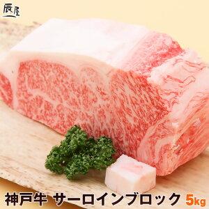 神戸牛 サーロイン ブロック 5kg(冷蔵)<ローストビーフ ステーキ 焼肉>【送料無料 あす楽対応】ギフト 内祝い お祝い 結婚 出産 入学 牛肉 肉 グルメ