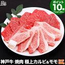 【P10倍 24日am2時まで】神戸牛 焼肉 セット 極上 カルビ &モモ 500g(冷蔵)【あす楽対応】【ギフト 内祝い お祝い …
