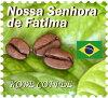 ブラジルノッサセニョーラデファティマ100g