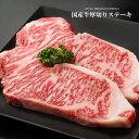 500円クーポン使える!【夏のギフト、お中元に】九州産国産牛サーロインステーキ用肉【500g(250g×2枚入り)】【 誕生…