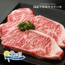 遅れてごめんね!!九州産国産牛サーロインステーキ用肉【500g(250g×2枚入り)】【 御中...