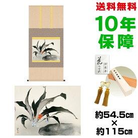 掛け軸 モダン おしゃれ 万年青 川端龍子 洛彩緞子本表装 幅54.5×高さ約115 新絹本