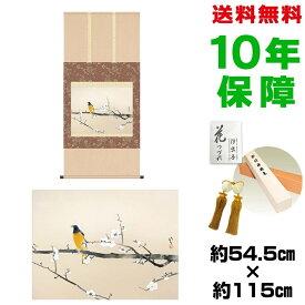掛け軸 モダン おしゃれ 梅花小禽図 川端龍子 洛彩緞子本表装 幅54.5×高さ約115 新絹本