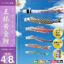 王様黄金鯉(千鳥吹流し)-4m-5匹8点セット