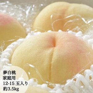 7月25日頃から順次発送予定 訳あり 桃 夢白桃 ゆめはくとう YUMEHAKUTO 家庭用 痛みあり 約3.5kg 約11-15玉入り 予約販売中 農家直送 もぎたて発送 岡山県産 白桃 PEACH
