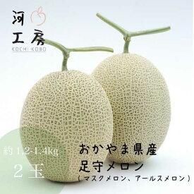 メロン ギフト 足守メロン アールスメロン マスクメロン 岡山県産 2玉入り 1玉約1.2-1.4kg 糖度14度以上 販売中 農家直送 もぎたて発送 melon