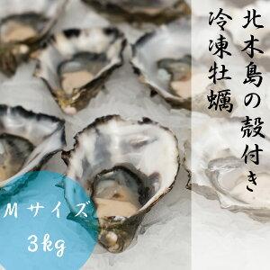 ギフト 牡蠣 Mサイズ 3kg 約37粒-50粒 1粒 約60g-79g 冷凍 殻付き かき 岡山 北木島 1年カキ 加熱用 電子レンジ用 容器付き 取り寄せ