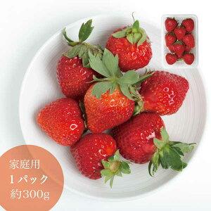 家庭用 晴れの国 岡山 あまおとめ 苺 いちご イチゴ 1パック 約12個 約300g strawberry 取り寄せ 産地直送 収穫後即発送 土耕栽培