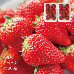 やよいひめ 家庭用 晴れの国 岡山 苺 いちご イチゴ 2パック 約24個 約600g strawberry 取り寄せ 産地直送 収穫後即発送 土耕栽培