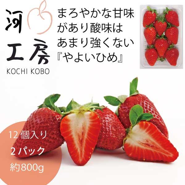 【送料無料!!一部の地域を除く】家庭用 晴れの国 岡山 やよいひめ 苺 いちご イチゴ 2パック24個【約800g】 strawberry 販売中 産地直送 収穫後即発送