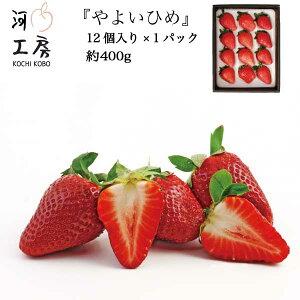 ギフト用 やよいひめ 晴れの国 岡山 苺 いちご イチゴ 1パック 12個 約400g strawberry 販売中 産地直送 収穫後即発送 送料無料!!一部の地域を除く