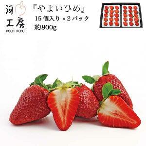 ギフト やよいひめ 晴れの国 岡山 苺 いちご イチゴ 2パック 30個 約800g strawberry 産地直送 収穫後即発送 送料無料!! 一部の地域を除く