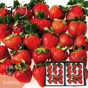 ギフト おいCベリー 苺 いちご イチゴ 2パック 24個入り 約800g (1パック 12個入り) 晴れの国 岡山  strawberry 産地直送 収穫後即発送