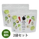 【送料無料】無添加野菜ブイヨン 132g×2袋 国産 スープパレット無添加野菜だし【アレルギー対応食品】