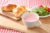 【無添加スープ】souppaletteやさしいレッドビートスープ5杯分