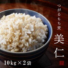 もち麦 国産 10kg×2袋 青森産 はねうまもち 送料無料 令和2年産 つがるもち麦美仁20kg