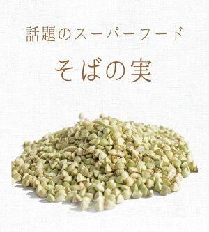 【送料無料】前田食品純国産そばの実