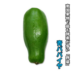 青パパイヤ1個(200g〜350g)