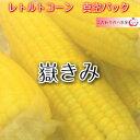 新物!嶽きみ真空パック Lサイズ お徳用パック6本入り 2980円 【送料込み】