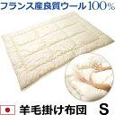 フランス産良質ウール100% 羊毛掛け布団 シングル 150×210cm 日本製 暖か 保温 吸湿 ふっくら 表面キルト加工 無地 アイボリー